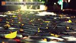 포토샵 CS4 강좌 - 사진의 밝기 조절