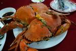 베트남, 뭘 먹나. 베트남 중부 요리 구경