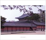 #02. 창덕궁[昌德宮]의 봄