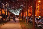 크리스마스 시즌 시작한 자그레브의 밤