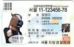 인터넷 운전면허 적성검사, 면허 갱신