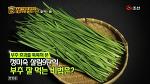 [만물상] 초간단 부추 손질법 + 부추김치 맛있게 담그기