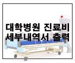 대학병원 진료비 세부내역서 출력방법