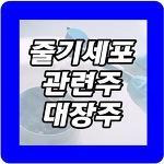 줄기세포 관련주 및 대장주 종목 상세정보 총정리!