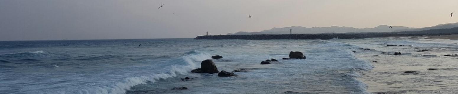 iwf장길자님-국제위러브유 운동본부의 긴급구호활동