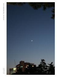 달을 본적 있나요?