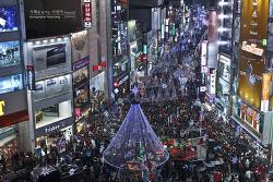 밤이 아름다운 부산 크리스마스 트리 문화 축제