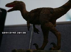 한국에서 일본 공룡 사는 방법 by 라쿠텐