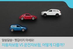 자동차보험 VS 운전자보험, 어떻게 다를까? 운전자보험 가입할 때 이것만은 꼭!