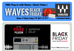 Black Friday Event : Waves - SuperTap Delay Free / 블랙 프라이데이 한정 무료
