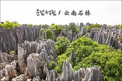 [중국 운남성] 2억7천만년이라는 시간이 만든 작품 쿤밍의 운남석림 /  云南石林