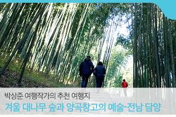 [박상준 여행작가의 추천 여행지] 겨울 대나무 숲과 양곡창고의 예술-전남 담양