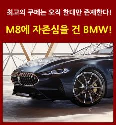 글로벌 최고의 럭셔리 쿠페 등장! BMW 8 시리즈로 자존심을 회복한다!