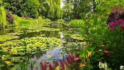 Jardins de Monet, Giverny France