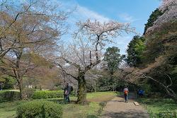 신주쿠교엔 (新宿御苑)