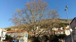 가족동유럽여행8. 아드리아해의 보석! 크로아티아 두브로브니크