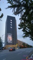 그랜드 앰배서더 호텔 - 슈페리어 트윈룸 후기