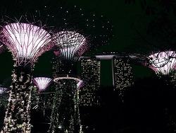 Singapore #13 - 가든스 바이 더 베이, 슈퍼트리 그로브