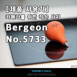 [제품 사용기] 카메라를 위한 작은 사치 - Bergeon No.5733