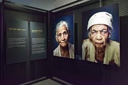 전시로 만나는 일본군 위안부 피해자