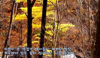 억겁년동안 만든 자연작품-신불산 계곡의 가을