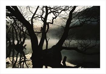 청송 주산지의 새벽 풍경과 가을 주왕산을 걷는 시간