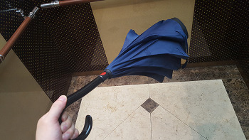 레그넷 우산 장점 단점 실사용 후 느낀점 구매시 참고점