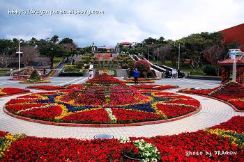 [오키나와여행 13] 해양엑스포공원(해양박공원) 분수광장, 화려한 꽃장식