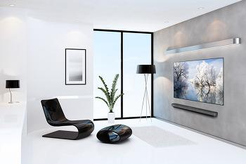 2017년 상반기 TV 결산 LCD VS OLED TV 시장