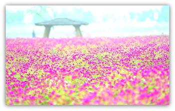 양주나리공원 9ㅡ9