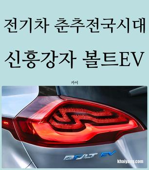 전기차 춘추전국시대! 신흥강자 볼트EV 추격하는 코나, 니로