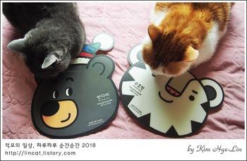 [적묘의 고양이]수호랑,반다비,깔맞춤 묘르신, 같이 찍어요,2018 평창 동계 패럴림픽