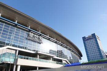 0217-0218 : 갑작스런 부산행, 광안리 해수욕장, 전포 카페 거리, 야타이미세, 남포동 국제시장