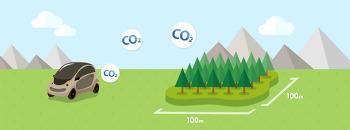 소나무 한그루의 연간 탄소(CO2) 흡수량을 얼마나 될까?
