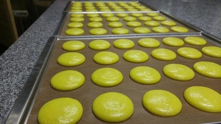 오늘은 마카롱 수업이 있는 날, 대전 반석동 마카롱 수제 초콜릿 전문점 르쇼콜라데디유