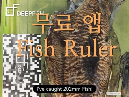 [무료앱] Fish ruler - 물고기 사이즈 재는 앱