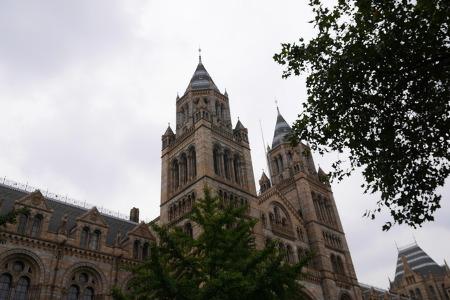 9월, 런던 자연사 박물관, Natural History Museum ,  2014