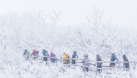 """""""눈의 꽃 보러 가자"""" 설경이 아름다운 겨울 여행지 & 겨울 산행 준비 팁"""