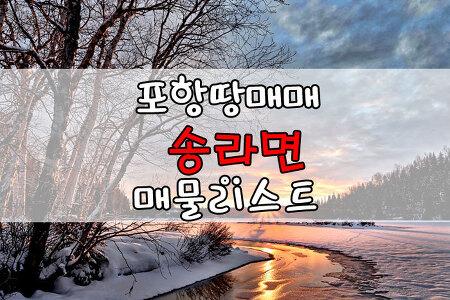 ▣포항땅매매▣ 송라면 토지매매, 임야매매, 농지매매 12월11일 땅매매 목록