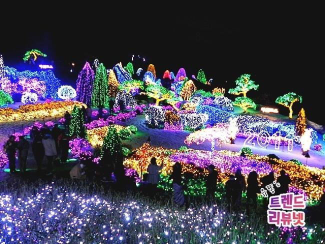 2011 겨울 아침고요수목원 '오색 별빛 축제'