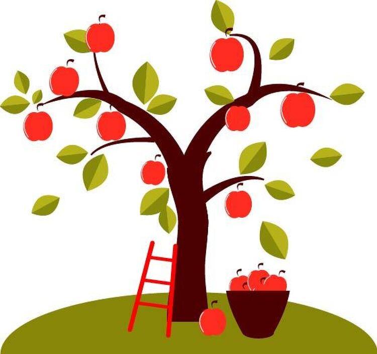 사과 나무 벡터 소스