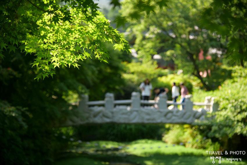 통영 미래사, 초록 가득한 편백나무숲에서 잠시 쉬어감