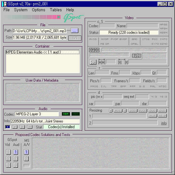GSpot에서 살펴본 pm2_001.mp3 파일 정보