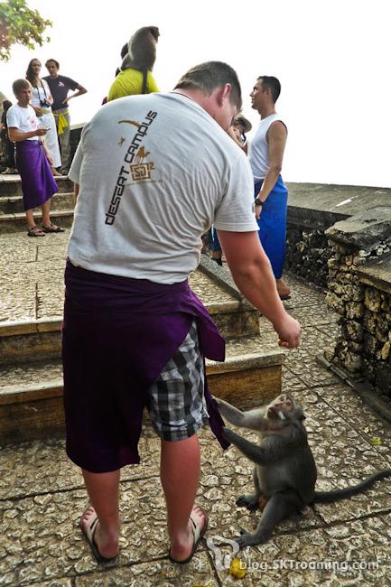[여행Tip]신들의 섬으로 떠나자, 인도네시아 발리 여행정보