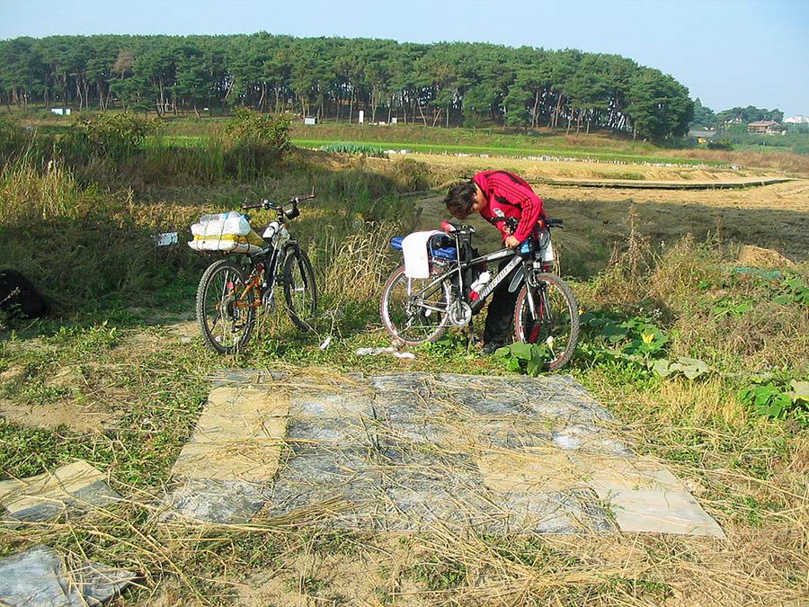 자전거로 달리자 - 3일차 ① ▷ 충청도 : 1413BC4B513BA4CC362EEA