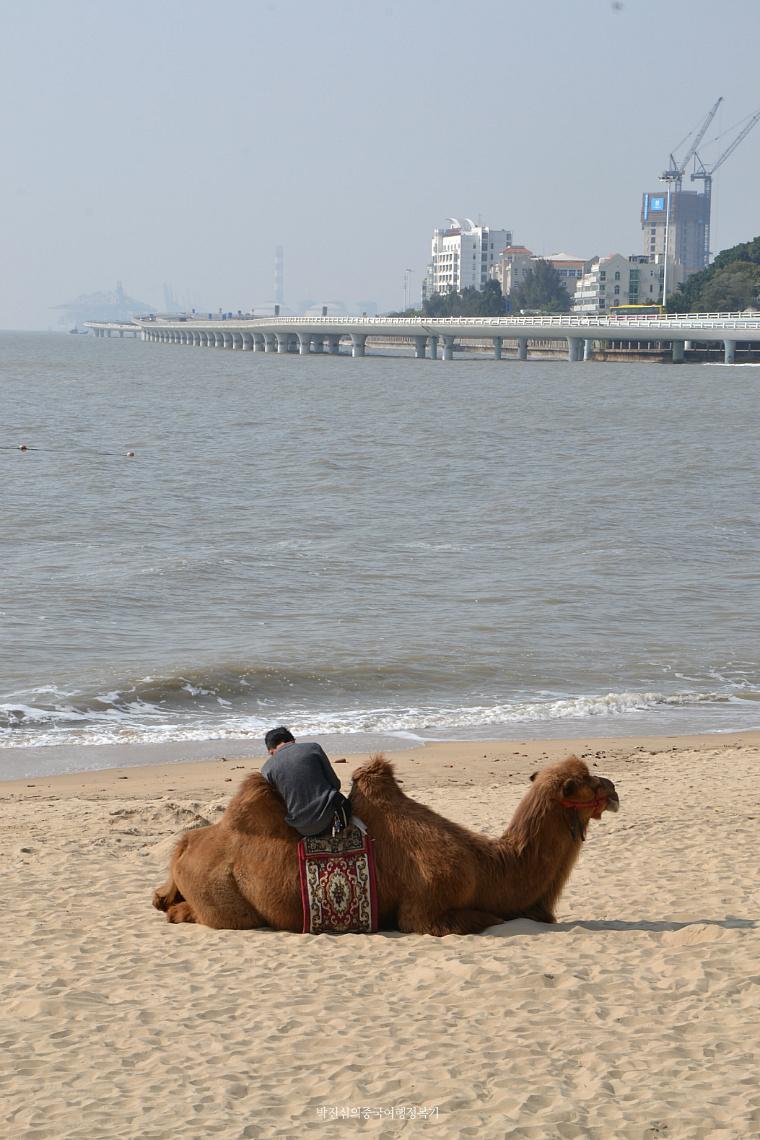 샤먼(厦门 하문) 해변가 도로 걷기 (복건성 3-5호)