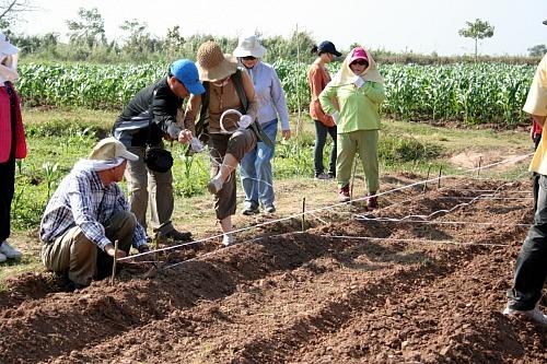 캄보디아 스폰서 투어 농장
