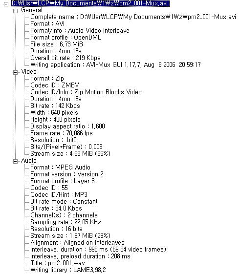 KMPlayer에서 읽어온 파일 정보