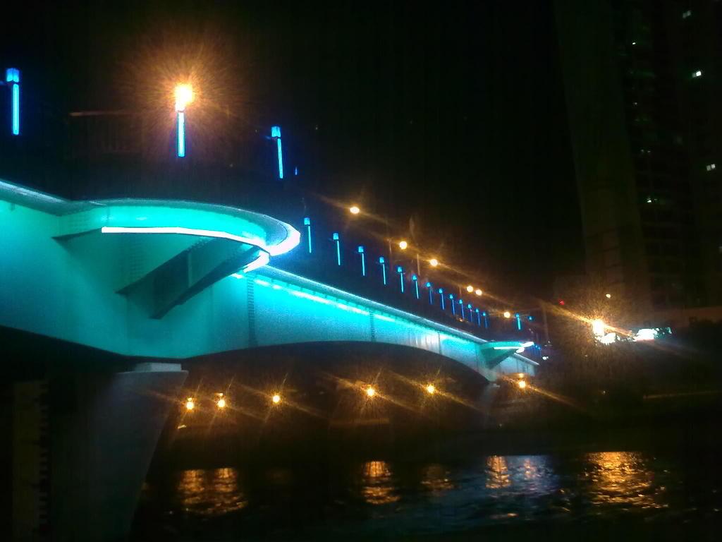 대구 수성교에서, night shot of Suseonggyo, Daegu by Ara
