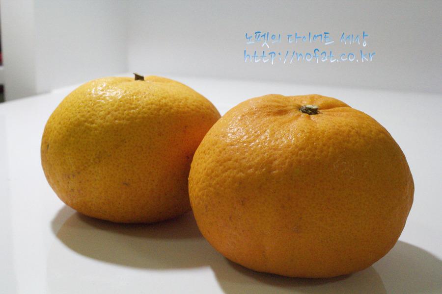 삼색과일다이어트체험기, 과일다이어트, 여배우다이어트, 여배우삼색과일다이어트, 과일다이어트시행착오, 갈아먹는다이어트, 갈아먹는과일 사진 #1